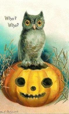 bumble button: free Halloween clip art 1900-1920's antique postcards Black Cats,Owls,Pumkins,Witches
