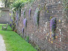 Begroeide muur Brick Wall Gardens, Landscape Design, Garden Design, Bonsai Garden, Small Gardens, Hedges, Fence, Backyard, Outdoor Structures