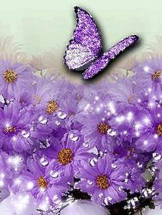 Beautiful purple ~ Butterflies  & Flowers....