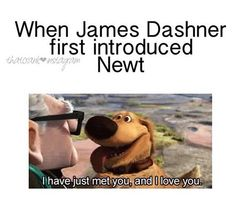 """I was like: """"Hey Newt,you´re so cool! I like you! I´ll be with you till the end of...""""  After reading #TDC : *sobbing* """"Damn it, James! I hate you!"""" *sobbing harder*"""