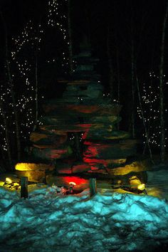 Lights Before Christmas - Toledo Zoo
