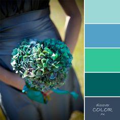 Сине-зеленые гортензии   DiscoverColor.ru
