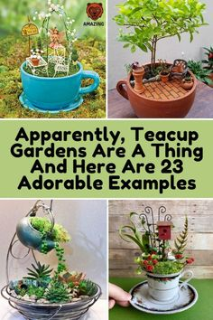 Apparently, Teacup Gardens Are A Thing And Here Are 23 Adorable Examples Fairy Garden Pots, Fairy Garden Houses, Gnome Garden, Garden Art, Fairy Gardening, Fairy Crafts, Garden Crafts, Garden Projects, Garden Ideas