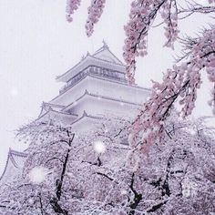 """Find and save images from the """"kilimanjaro"""" collection by m a d d i e (chlcago) on We Heart It, your everyday app to get lost in what you love. Image Fun, Find Image, Japan Kawaii, Paris Skyline, We Heart It, Angel, Instagram, Cherry, Aesthetics"""