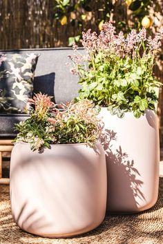 Palletbanken zijn een trend! Niet bang voor wat vrolijkheid in de tuin of op het balkon? Geef jouw palletbank een oosters tintje met de tuintrend 'oriental pastels'. Bij deze trend draait alles om het combineren van zachte pasteltinten met oosterse prints en materialen als rotan en bamboe. #orientalpastel #tuintrends #palletbank #palletbanktrend #orientalpasteltuin #palletkussens #pallettuinmeubilair #windlichtdecoratie #sierkussenstuin #tuinpastel #pasteltintentuin Vases Decor, Indoor Plants, Outdoor Gardens, Garden Design, Planter Pots, Pastels, Pure Products, Beads, Flowers