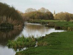 The River Itchen, Hampshire. Recommended by http://www.fishinglondon.co.uk/