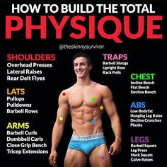Looking to build the total physique? If so you need to train all the big muscle groups in your body. As you can see from this diagram you simply needs to focus on.Shoulders: A crucial part of an. Weight Training Workouts, Fast Workouts, Hiit, Overhead Press, Lose Lower Belly Fat, Big Muscles, Fitness Tips, Fitness Workouts, You Fitness