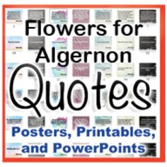 You are going to love these! Novel Quotes posters featuring an assortment of the most popular and relevant quotes from novels you regularly use in. Flowers For Algernon Quotes, Boy In Striped Pyjamas, Books Vs Movies, Quotes From Novels, Popular Quotes, School Subjects, Teacher Hacks, Reading Strategies, Printable Quotes
