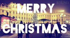 Merry Christmas from IALC school in Vienna, Austria:  ActiLingua | http://ialc.org/actilingua-vienna-austria | #learn #German #Austria #IALC #accredited #language #school #Actilingua