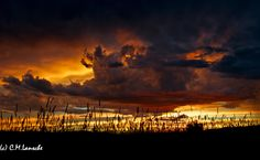 Monsoon Sunset.  Beautiful sky tonight over hay pasture in Oakley, Utah. July 31, 2012. (c) C.M. Lansche