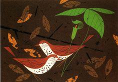 Wood Thrush Serigraph • The Charley Harper Gallery