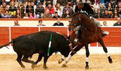 Antonio Ventura deslumbra en el festival de Montijo - Mundotoro.com #toros #Portugal