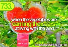 Living With the Land at a restaurant at the land we had a sandwich with the vegetables and fruits from the ride-- best sandwich ever!!!!