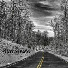 Fine Art Photography Black and White Colorsplash HDR by PhotoLingo, $15.00 Winter, Snow, Road, Trees, Photography, Print, Art, Colorsplash, Black and White, HDR, Landscape, Virginia, Country Road