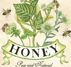 A lovely vintage print illustration of a honey brand Posters Vintage, Images Vintage, Vintage Prints, Bee Images, Honey Jar Labels, Honey Label, Vintage Bee, Vintage Labels, Vintage Ephemera