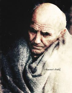Maester Luwin ~ Game of Thrones Fan Art
