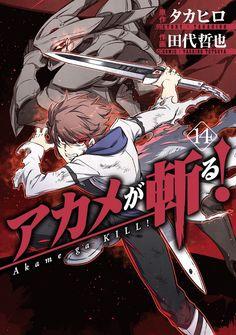 El Manga de Akame ga Kill! finalizará el 22 de diciembre.