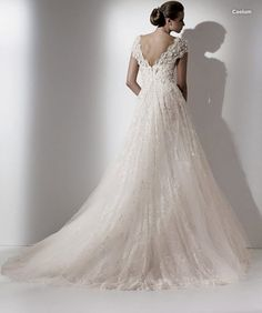 Google Image Result for http://wedding-pictures.onewed.com/edgy/files/dresses/larges/elie-saab-caelum-b.jpg