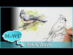 ▶ How to Paint Birds in Ink and Watercolor Wash Technique - YouTube