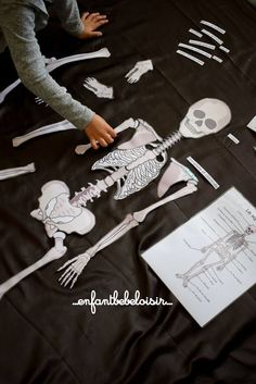 Discover recipes, home ideas, style inspiration and other ideas to try. Sciences Cycle 3, Science Activities For Kids, Preschool Science, Montessori Education, Special Kids, French Teacher, Science Experiments Kids, Tooth Fairy, Halloween Diy