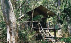 modern tree houses   modern tree house.   Design & Architecture - Design & Arquitetura