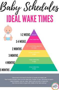 Ideale Weckzeiten für Babys (Tabelle enthalten) - Home Baby Care Page Newborn Schedule, Baby Sleep Schedule, Baby Wise Schedule, Feeding Schedule For Baby, 5 Month Old Schedule, Bedtime Routine Baby, Baby Feeding Chart, New Parents, New Moms
