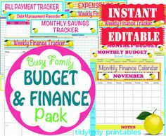 INSTANT Download Editable Budget and by TidyLadyPrintables