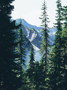 brunchataudreys: snow lake washington (x) Beautiful World, Beautiful Places, Landscape Photography, Nature Photography, Snow Lake, Lake Life, Wanderlust Travel, Natural Wonders, The Great Outdoors