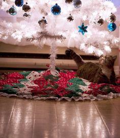 christmas cats <3