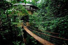 Finca Bellavista: A Community of Amazing Treetop Homes in Costa Rica | Apartment…