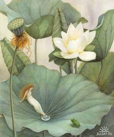 Asako Eguchi art