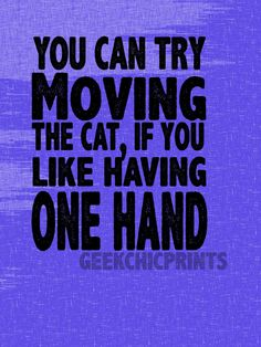 You Can Try Moving the Cat Funny Typography Digital Print Cat Lovers Gift Art