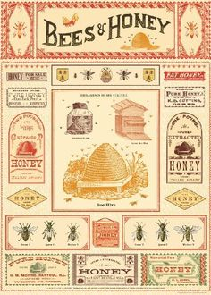 Cavallini & Co. Bees And Honey Decorative Decoupage Poster Wrapping Paper Sheet, http://www.amazon.com/dp/1619923815/ref=cm_sw_r_pi_awdm_1TWXub1Z1QQ5N