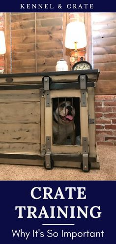 In-crate training is essential for dogs. It keeps them stress-free, this is for you also. The dog will learn to respond to your commands. When the dog lives in a designer dog crate without any worry, it stays happy. What more in-crate training can do to your dog? See our infographic for details. Dog Training Books, Crate Training, Boy Dog, Girl And Dog, Dogs And Kids, Dogs And Puppies, Small Dog Accessories, Dog Classes, Dog Crate