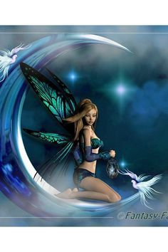Papparazzo of the Paranormal Colin Foster discovers amazing Fairy video! Foto Fantasy, 3d Fantasy, Fantasy Artwork, Beautiful Fantasy Art, Beautiful Fairies, Elfen Fantasy, Fairy Wallpaper, Angel Artwork, Fairy Drawings