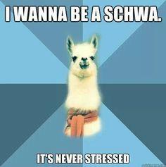 Schwa