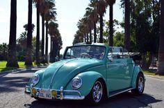 "Juan Gabriel Campos, of San Bernardino, California, U.S.A. 1961 Custom paint Seafoam Pastel Green VW Convertible, Pan off resto. Some Mods include: Later tail Lights, Fiberglass Vert ""W"" Decklid, 2180cc engine, Dual 44 Webers, External oil Cooler, Pro freeway flyer trans, 2″ Narrowed adj. front beam, 2″ CB drop spindels, Front Disc brakes.Porsche Cookie Cutter Wheels, Porsche Style H4 Bosch lenses, Vintage Hassia fog lights, Flat 4 Banjo steering wheel, Gene Berg lock shifter, etc…"