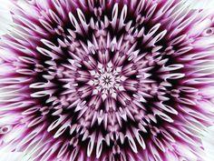 kaleidoskop, violett, purpur, weiß, Strahlen