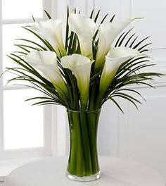 Calla Lily Bouquet is an extraordinary display of these exquisite white blooms. Gorgeous and bright, our finest full-sized white calla lilies capture the essence of beauty and sophistication accented by lush palm leaves White Lily Bouquet, Calla Lily Bouquet, Arrangements Ikebana, Modern Flower Arrangements, Deco Floral, Fresh Flowers, Lilies Flowers, Send Flowers, Easter Flowers