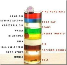 specific gravities/densities of different liquids and solids- cool experiment :)