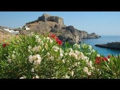Golden Collection - Sirtaki and Bouzouki Greek Music
