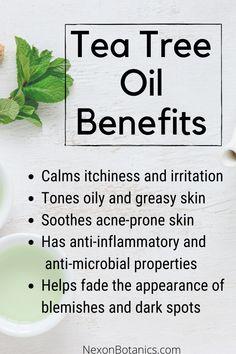 Sleeping Essential Oil Blends, Tea Tree Essential Oil, Homemade Essential Oils, Organic Essential Oils, Young Living Essential Oils, Tea Tree Oil Uses, Organic Tea Tree Oil, Tea Tree Benefits