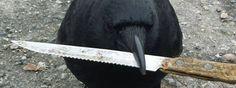 Canuck, die Krähe, hat einen ziemlich guten Ruf in Vancouver und seine Possen werden regelmässig bei Facebook veröffentlicht. Am letzten Dienstag MOrgen musste die Polizei in der Nähe von Hastings und Cassiar Streets einen Mann erschiessen. Als die Polizei am Tatort eintraf, wurde sie von sie von einem Mann mit einem Messer empfangen und ein [ ]