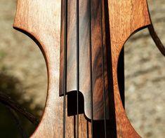 Bass of the Week: Dahrendorf Guitars Darwin EUB34
