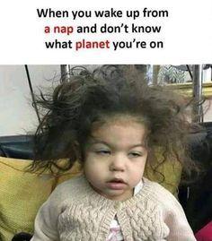 Funny Memes Memes Funny Pictures Best Memes Hilarious Memes