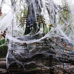 Weave your way through the woods and see if you're in for a fright or delight this #heliganhalloween #thelostgardensofheligan #halloweencornwall #halloweeninthewoods #pentewan #spidersweb #frightordelight