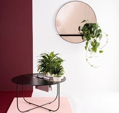 Meet The Designer - Bujnie | Bujnie is a design studio that specialises in plant design for your homes. Bujnie offers you the opportunity to introduce plants as an integral part of your home.Their clean minimalist forms are handmade with attention to detail. #houseplants #furnituredesign #coffeetable #mirror #styling #homedecor #interiors #interiordesign