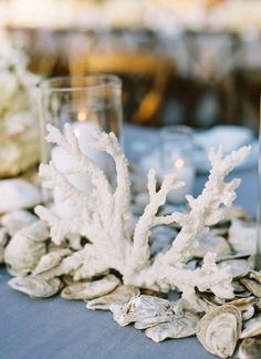 Oyster shell table decor! I love this one and all the ones that have shells all down the center of tables.