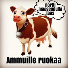 Seuraapa klo9 Twitterissä tai Periscopessa @virtuaalikyla Löydät meikäläisen tekemässä livenä lehmille ruokaa!  WHAAAT?!!