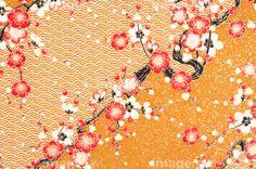 千代紙の写真素材 - imagenavi